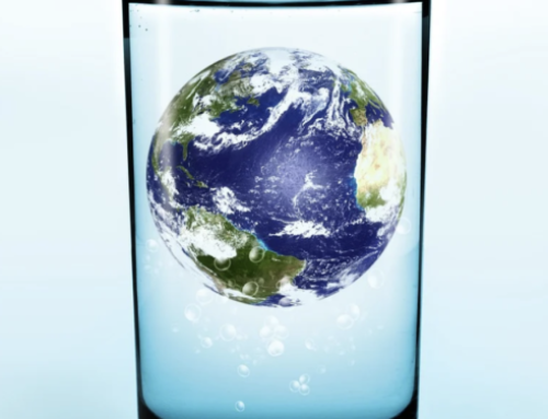 Comment répondre individuellement à l'urgence environnementale avec une pomme de douche économe ?